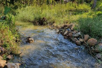 Bán 678m2 đất giáp suối - có 25m mặt tiền đường nhựa - cách đèo Bảo Lộc 4km - Rất hợp nghỉ dưỡng