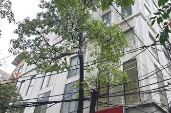 Tuyệt phẩm MP Hoàng Cầu-Đống Đa-Phố Vip-Nhà Sang-Giá Ngon-250m2, mt 8m, 64 tỷ
