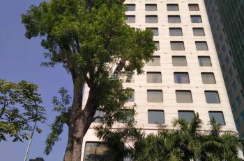 Bán tòa nhà 157 Pasteur, Quận 3, DT 20mx35m, 14 tầng, giá tốt 500 tỷ, LH 0945.848.556