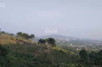 Bán 1ha đất tại Hợp Hòa - lương sơn -Hòa Binh có 400m2 đất sổ đỏ, phù hợp làm nghỉ dưỡng, sinh thái