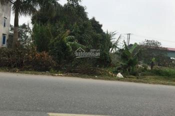 Bán đất vị trí đẹp huyện Gia Bình, Bắc Ninh