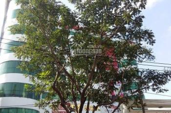 Chính chủ bán tòa nhà mặt tiền Bình Giã, Q.Tân Bình. DTSD: 980m2