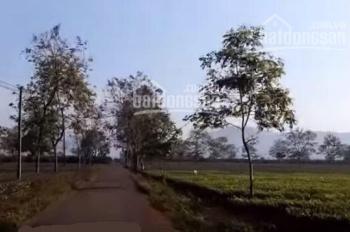 Bán đất nền đường Nguyễn Chí Thanh, TP. Pleiku, 450m2, chỉ 800tr