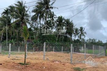 Bán đất chính chủ đường Lê Thành Phương, phường Trà Đa, TP. Plei Ku, 160m2