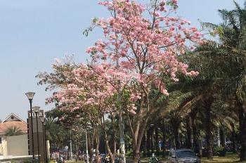 Chính chủ đi nước ngoài cần bán gấp 2 căn Sài Gòn Mia 65m vài 76m, giá iu thương. LH: 0938308438.