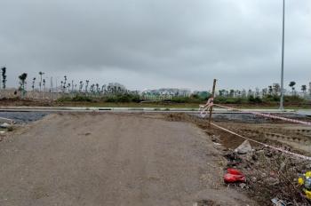 Bán đất DT 262m2 có mặt tiền rộng gần 20m tại Phường Phúc Đồng, Long Biên. Giá 40.5 tr/m2