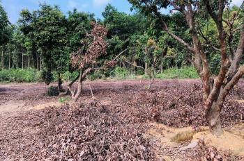 Bán gấp lô đất 3778m2 đất thổ cư huyện Lương Sơn, Hoà Bình, phù hợp nghỉ cuối tuần