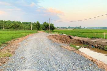 Cần chuyển nhượng đất làm vườn, ở xã Tân Thạnh Tây, huyện Củ Chi, DT 3175 m2, giá 1.5 tr/m2