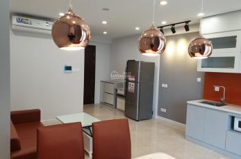 Cho thuê căn hộ 01 phòng ngủ đủ đồ D'Capitale Trần Duy Hưng đối diện Big C 10 tr/th. LH 0963300913