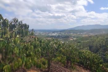 1,5 ha view đỉnh núi đẳng cấp, đường đất 6m, sắp đổ nhựa