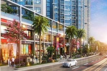 Nền liền kề - shophouse KĐT mới Đại Kim Định Công siêu đẹp, giá CĐT chỉ từ 40tr/m2 - 0901839368