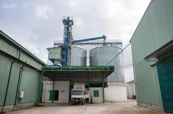 Cho thuê 3 silo chứa hàng nông sản tại cảng quốc tế Cẩm Nguyên, Long An. LH: 0908086886 (My)