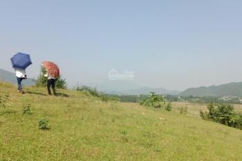 Cần bán gấp 9200m2 thổ cư yên bài sát cổng Tochi Garden giá cam kết mềm nhất khu vực