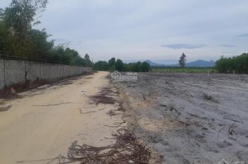 Bán đất 1000m2 giá chỉ 980 triệu, ngay nhà nghỉ rừng vàng 2, đường Hùng Vương, La Gi, Bình Thuận