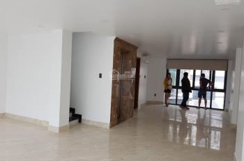 Cần cho thuê gấp nhà MT Nguyễn Thị Minh Khai, Phường 5, Q3, DT: 5x21m