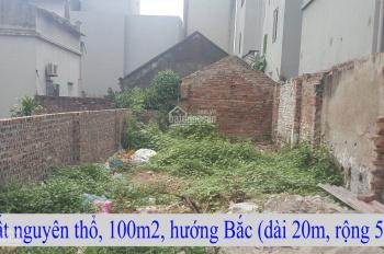 Chính chủ gửi bán mảnh đất tại thôn vệ DT 99,6m2 đường ô tô LH 0333559198
