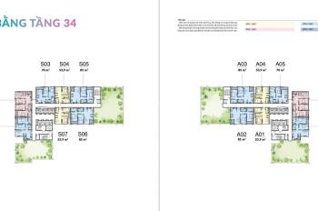 Siêu hot căn hộ ngoại giao bên cạnh Sky Garden giữa trung tâm quận Cầu Giấy - LH 0934330895