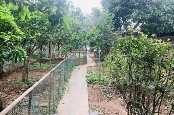 Bán nhà vườn phố Quảng Khánh, 500m2, mặt tiền 6.2m, 16.5 tỷ, đầu tư, 0383988084