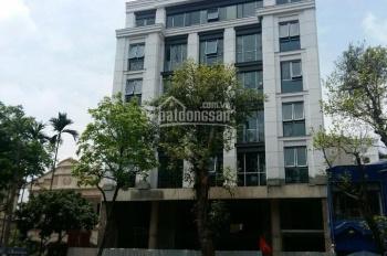Chính chủ cần cho thuê nhà đường Trường Sơn làm văn phòng, 14m x 16m, 1 trệt 4 lầu