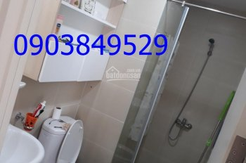 Cho thuê căn hộ M-ONE 2 phòng ngũ tấng 12B Tòa T2 Bế văn Cấm Q7 HCM