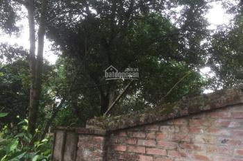 Bán gấp 3800m2 đất thổ cư đẹp rẻ tại huyện Lương Sơn, DT: 3800m2 có 400m2 đất ở
