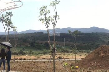 Bán đất Bảo Lộc giá 290tr có sổ riêng từng nền