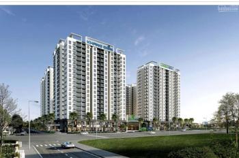 Khang Điền ra mắt căn hộ mới Lovera Vista tại khu dân cư phong phú 4. Vay 0% lãi trong 18 tháng