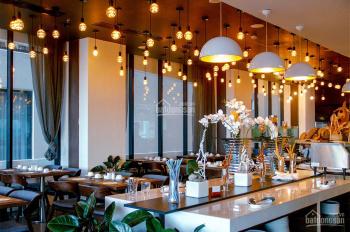 Hot! MP phố Đào Tấn 40m2x5T, MT 7m, giá chỉ 40tr/th, kinh doanh mọi mô hình, LH: 0968219290