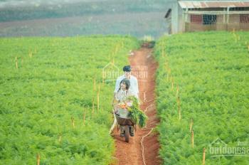 Bán đất R'Chai Phú Hội, Đức Trọng