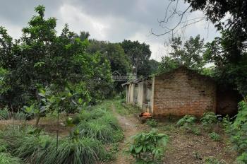 Cần bán 5700m2 đất có vị trí đẹp tại xã Thành Lập, Lương Sơn, Hòa Bình.
