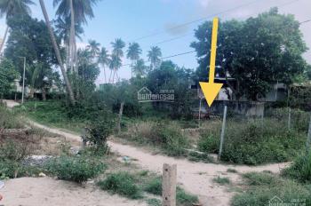 Bán lô đất lúa 1000m2 hẻm ô tô đường Phú Nông. Giá 9tr/m LH 0915215575