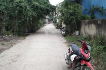 Bán nhanh 55m2 tại Đa Tốn, Gia Lâm, Hà Nội