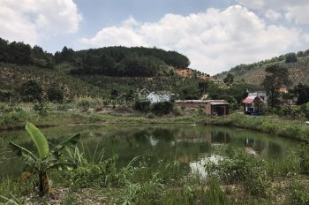 Bán đất tặng nhà mái thái - 8100m2 - Cách TT Đà Lạt 20km