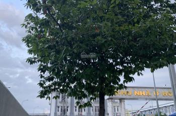 Bán đất hai mặt tiền đường Thuận Giao 19, DT 10x30m, giá 7.4 tỷ