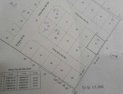 Bán đất Thảo Điền quận 2 khu công ích Quận 4 diện tích 15x21m=316m2, thổ cư 100% giá 98 triệu/m2