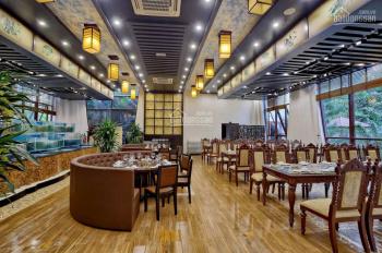 Cho thuê nhà MP Hoàng Cầu, DT 75mx2t, MT 6m vị trí đẹp.
