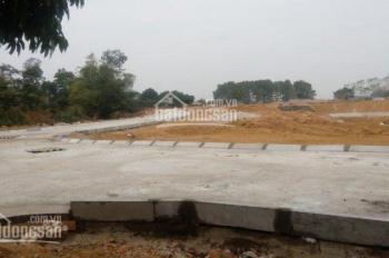 Bán đất nền 333m2 gần công nghệ cao Hòa Lạc chỉ từ 6 triệu/m2, 100% thổ cư