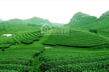 Chính chủ cần bán lô đất ngay gần trung tâm Đà Lạt, gần các khu du lịch, công chứng sang tên ngay