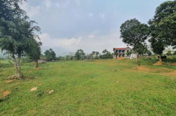 Bán gấp 4200m2 đất view cánh đồng thoáng mát, tại Yên Bài, Ba Vì, Hà Nội