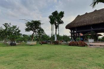 Cần bán nông trại có sẵn 2,5ha đang kinh doanh ở Lương Sơn Hòa Bình. LH 0948.035.862