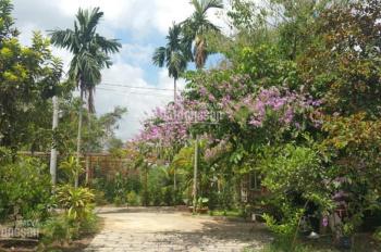 Bán nhà vườn giáp sông 3500m2 mặt tiền đường số 12, P. Long Phước, Q9, giá 4tr/m2