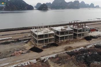 Dự án Green Dragon City - nơi đầu tư bên vịnh Bái Tử Long