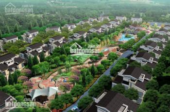 Cơ hội đầu tư giai đoạn đầu, giá tốt dự án đất nền khu đô thị sinh thái Cẩm Đình - Hiệp Thuận