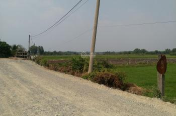 Cần bán đất xã An Phú, huyện Củ Chi