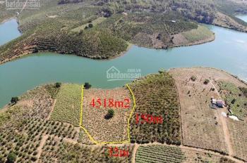 Đất đồi view giáp sông rất đẹp, thích hợp nghỉ dưỡng hoặc đầu tư, tổng 4500m2, giá 1.59 tỷ