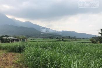 Nhượng 3300m2 đất thích hợp làm trang trại nhà vườn Wieu cánh đồng tại Yên Bài, Ba Vì