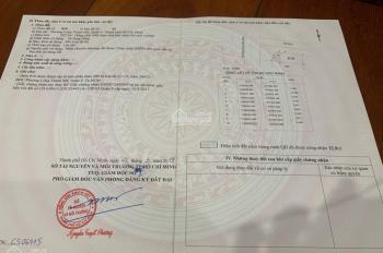 Đất sổ đỏ 2 mặt tiền Nguyễn Xiển, kế Vinhome Grand Park Quận 9