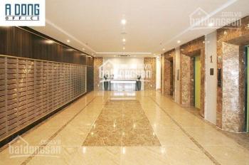 Cho thuê gấp văn phòng officetel Sky Center đường Phổ Quang, 49m2, giá chỉ 10 triệu