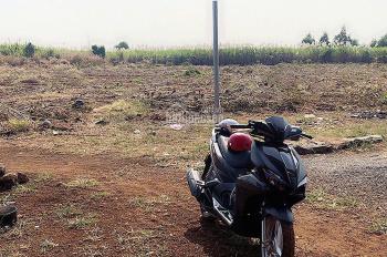 Đất sào Hưng Thịnh - Trảng Bom, SHR, gần QL1A, giá đầu tư