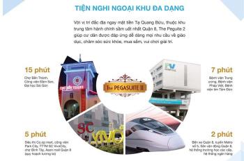 Duy nhất căn Duplex 3p 98m2 Pegasuite 2, giá chỉ 3,15 tỷ rẻ hơn CĐT 200tr. LH 0963767978